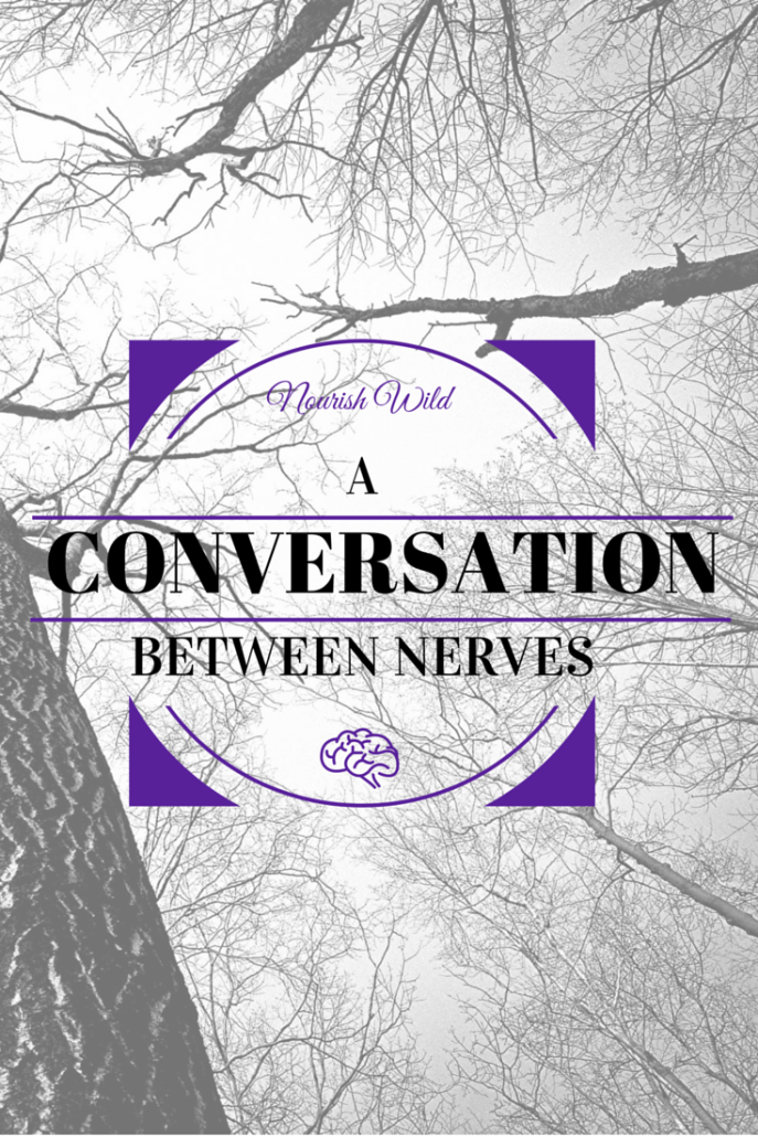 A Conversation Between Nerves: How your nervous system plays a role in your health